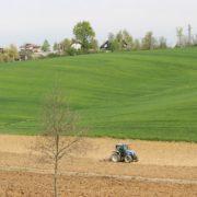 PAESAGGIO_2_azienda-agricol